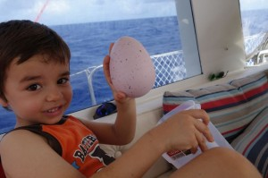 And finding the present (a dinosaur's egg), next morning